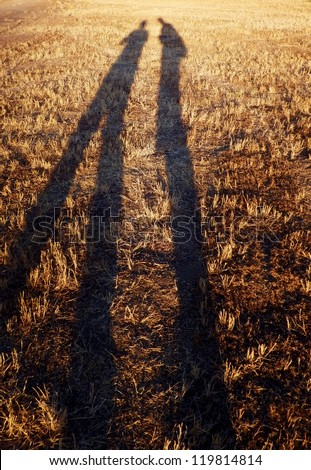 Long Shadows of Silhouettes Stretching Over Field Near Sunset - stock photo