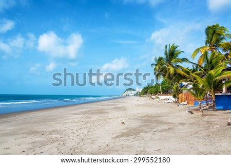 Long stretch of sandy beach lined by palm trees in Same, Ecuador