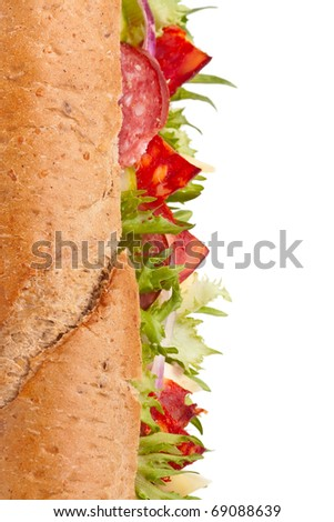 long whole wheat baguette sandwich with meat, vegetables and cheese - stock photo