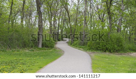 Long winding path to the forest