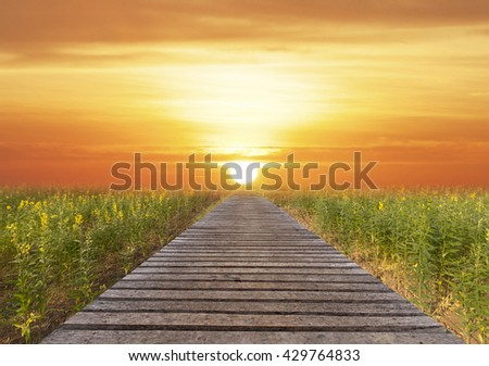 long wood bridge and beautiful sunlight and flower, selective focus
