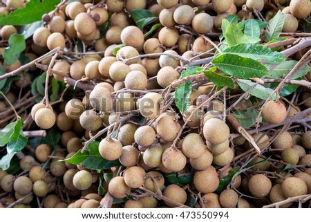 Longan favorite thai fruit delicious and sweet