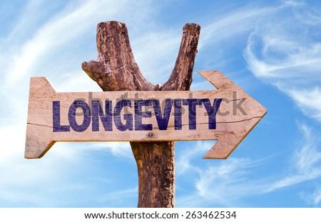 Longevity sign with sky background - stock photo