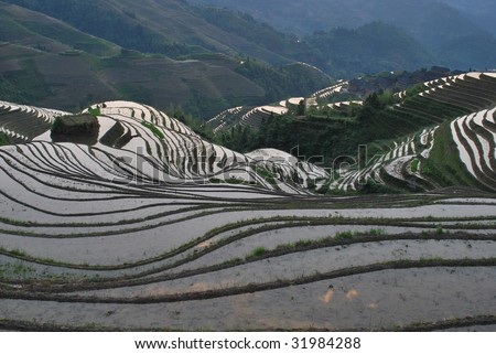 Longji Terrace was with a history over 800 years and is now a typical representative of Chinese farming culture. It at an altitude between 300 to 1180 meters, covers an area of 70 square kilometers. - stock photo