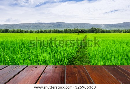 Look out from the wood table, sea rice fields in rural Chiang Mai, Thailand .  - stock photo