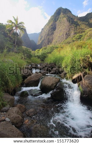 Look up a stream at Iao Valley on Maui - stock photo