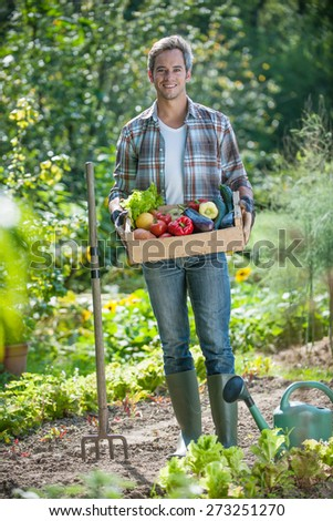 looking at camera, standing in his garden, a proud gardener harvest holding a crate of vegetables he collected
