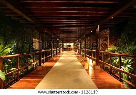 Looking down a covered bridge at night in the jungle