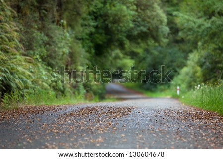 Looking down a winding country road with shallow depth of field - stock photo