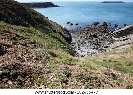 Looking down the cliff edge to a rocky beach