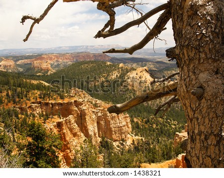 Looking northeast from Piracy Point in Bryce Canyon