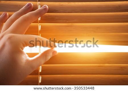 Looking through window blinds, sun light coming inside. Conceptual - stock photo