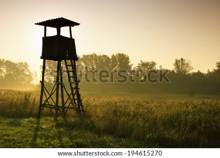 Lookout tower for hunting at dawn - stock photo