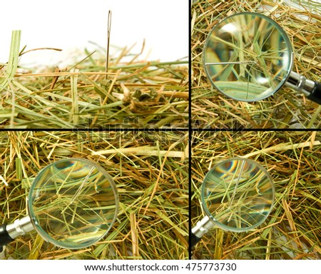 loops and needles in the hay close up