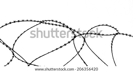 Loops of razor wire silhouetted against a white background. - stock photo