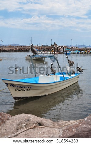 Mexico fishing stock photos royalty free images vectors for Baja california fishing