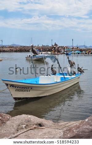 Mexico fishing stock photos royalty free images vectors for Baja california fishing