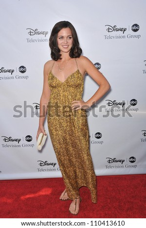 LOS ANGELES, CA - AUGUST 8, 2009: Christine Woods, star of Flash Forward, at the ABC TV 2009 Summer Press Tour cocktail party at the Langham Hotel, Pasadena.
