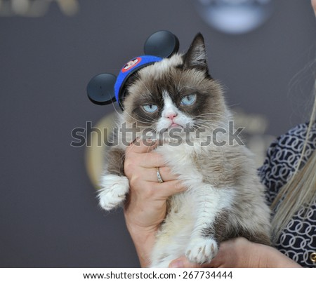 "LOS ANGELES, CA - MARCH 1, 2015: Grumpy Cat at the world premiere of ""Cinderella"" at the El Capitan Theatre, Hollywood."
