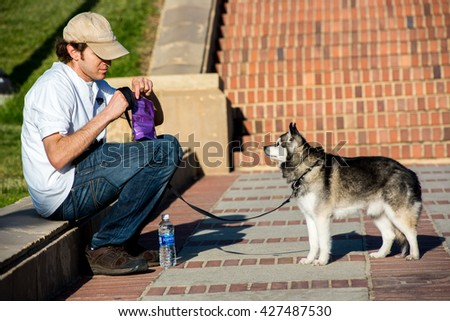 Los Angeles, CA/USA: May 10, 2016: Man with Alaskan Klee Kai dog on the UCLA campus.  UCLA is a public university in the Los Angeles area. - stock photo