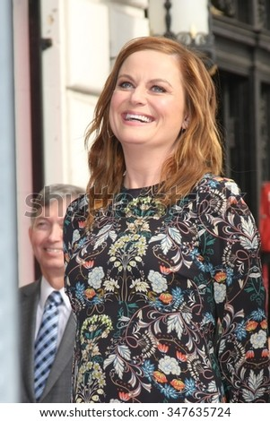 LOS ANGELES - DEC 3:  Amy Poehler at the Amy Poheler Hollywood Walk of Fame Ceremony at the Hollywood Blvf on December 3, 2015 in Los Angeles, CA - stock photo