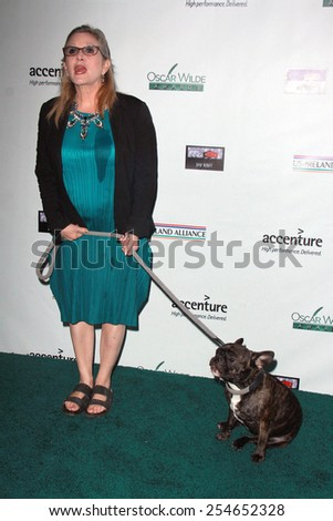 LOS ANGELES - FEB 19:  Carrie Fisher at the Oscar Wilde US-Ireland Pre-Academy Awards Event at a Bad Robot on February 19, 2015 in Santa Monica, CA - stock photo