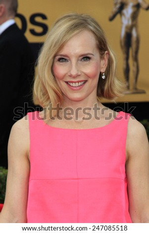 LOS ANGELES - JAN 25:  Amy Ryan at the 2015 Screen Actor Guild Awards at the Shrine Auditorium on January 25, 2015 in Los Angeles, CA - stock photo