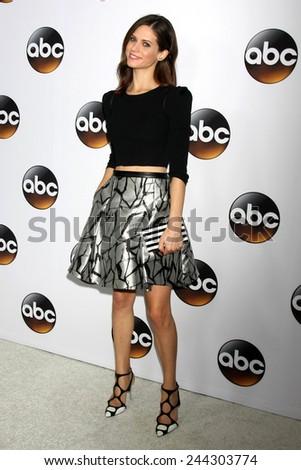 LOS ANGELES - JAN 14:  Lyndsy Fonseca at the ABC TCA Winter 2015 at a The Langham Huntington Hotel on January 14, 2015 in Pasadena, CA - stock photo