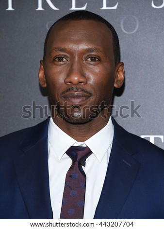"LOS ANGELES - JUN 21:  Mahershala Ali arrives to the ""Free State of Jones"" Hollywood Premiere  on June 21, 2016 in Hollywood, CA.                 - stock photo"