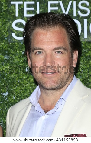 LOS ANGELES - JUN 2:  Michael Weatherly at the 4th Annual CBS Television Studios Summer Soiree at the Palihouse on June 2, 2016 in West Hollywood, CA - stock photo