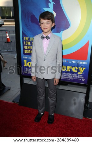 """LOS ANGELES - JUN 2:  Oliver Pohlad at the """"Love & Mercy"""" Los Angeles Premiere at the Academy of Motion Picture Arts & Sciences on June 2, 2015 in Los Angeles, CA - stock photo"""