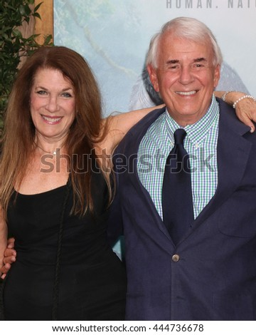 LOS ANGELES - JUN 27:  Wendy Riche, Alan Riche at The Legend Of Tarzan Premiere at the Dolby Theater on June 27, 2016 in Los Angeles, CA - stock photo