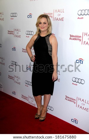 LOS ANGELES - MAR 11:  Amy Poehler at the Television Academy's 23rd Hall Of Fame Induction Gala at Beverly Wilshire Hotel on March 11, 2014 in Beverly Hills, CA - stock photo