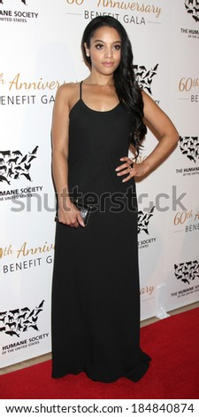 LOS ANGELES - MAR 29:  Bianca Lawson at the Humane Society Of The United States 60th Anniversary Gala at Beverly Hilton Hotel on March 29, 2014 in Beverly Hills, CA - stock photo