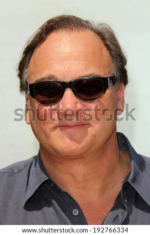 "LOS ANGELES - MAY 3:  James Belushi at the ""Legends of Oz: Dorothy's Return"" Los Angeles Premiere at Village Theater on May 3, 2014 in Westwood, CA - stock photo"