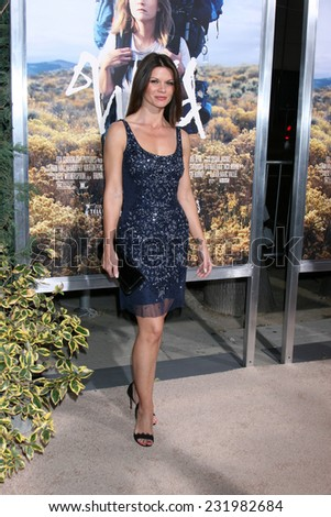"""LOS ANGELES - NOV 19:  Danielle Vasinova at the """"Wild"""" Premiere at the The Academy of Motion Pictures Arts and Sciences on November 19, 2014 in Beverly Hills, CA - stock photo"""