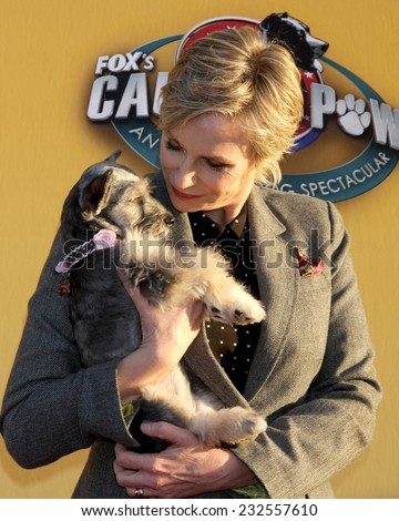 "LOS ANGELES - NOV 22:  Jane Lynch at the FOX's ""Cause for Paws:  All-Star Dog Spectacular"" at the Barker Hanger on November 22, 2014 in Santa Monica, CA - stock photo"