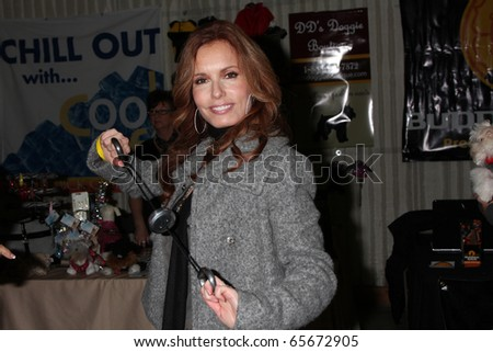 LOS ANGELES - NOV 20:  Tracey Bregman at the Connected's Celebrity Gift Suite celebrating the 2010 American Music Awards at Ben Kitay Studios on November 20, 2010 in Los Angeles, CA