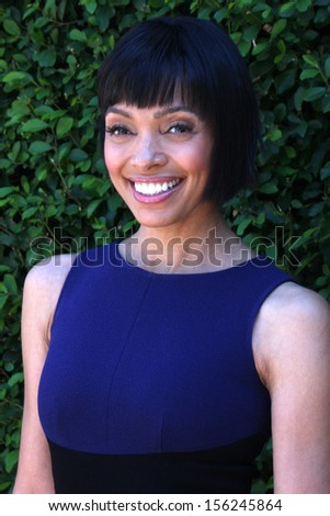 LOS ANGELES - SEP 29:  Tamara Taylor at the Rape Foundation Annual Brunch at Green Acres Estate on September 29, 2013 in Beverly Hills, CA - stock photo