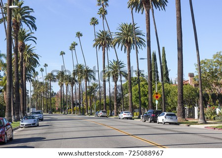 LOS ANGELES, USA - JAN 01, 2017. Beverly Hills district. High palm trees on blue sky background. Streets of Beverly Hills, Carmelita Avenue