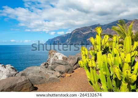 Los Gigantes cliffs. Puerto de Santiago, Tenerife, Canary Islands, Spain - stock photo