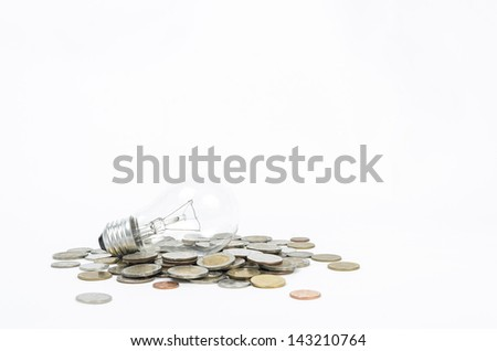 lost too much money because incandescent bulb  - stock photo