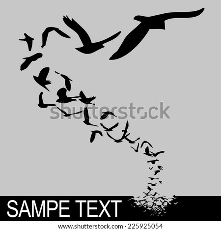 lot of birds flying; silhouette style illustration - stock photo