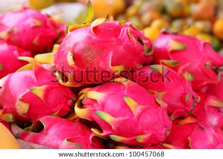 Lot of dragon fruits in the tropical market - stock photo
