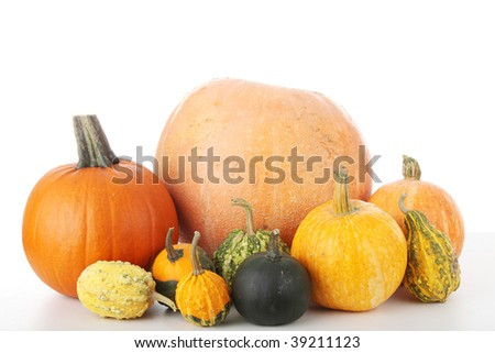 Lot of pumpkins on white table, isolated on white - stock photo
