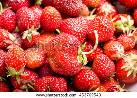 Lots of fresh bright red strawberries. Selective focus. Shallow depth of field. Toned.