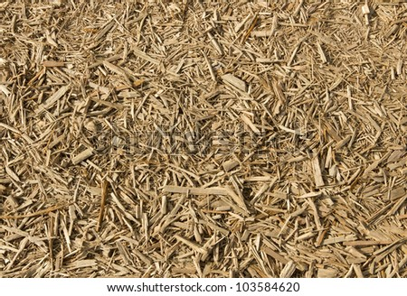 Lots of fresh wood chippings close up. - stock photo