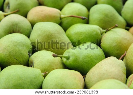 Lots of green pears for fruit background - stock photo