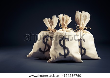 lots of money inside bags - stock photo