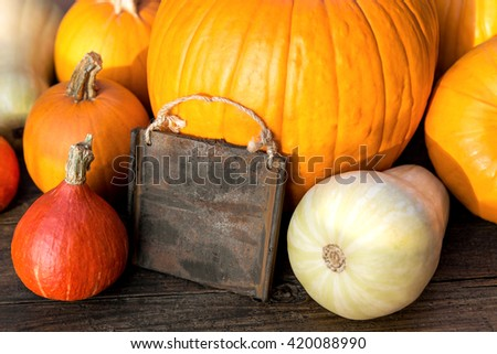 lots of organic Pumpkins and a board with copyspace on wooden background - stock photo